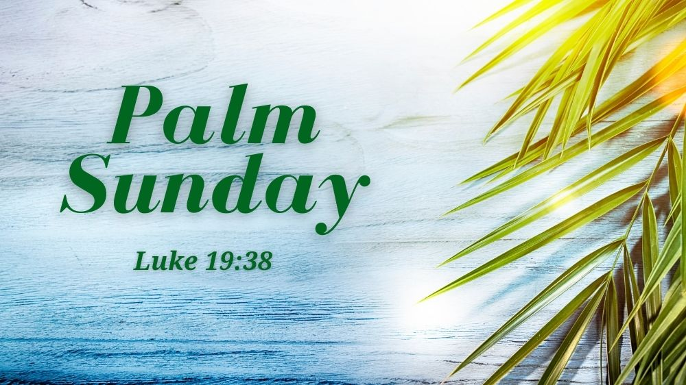 Palm Sunday: Ain't No Rock Image